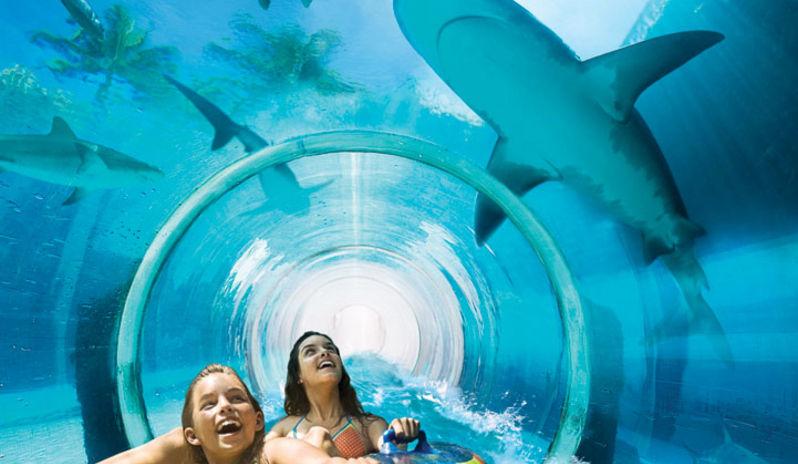 Багамы аквариум
