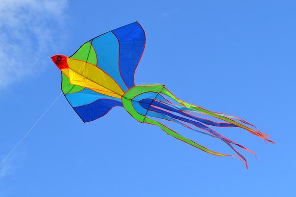 В Виктории, Австралия, незаконно запускать воздушного змея с 1966 года