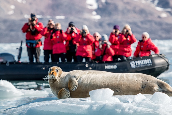 отдохнуть на Северном полюсе