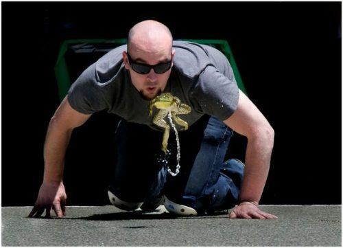 штат Калифорния, ежегодный конкурс лягушачьих прыжков