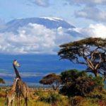 Волшебный мир Танзании – африканское путешествие мечты