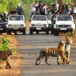 Отдых в Индии: 14 самых известных мест для посещения