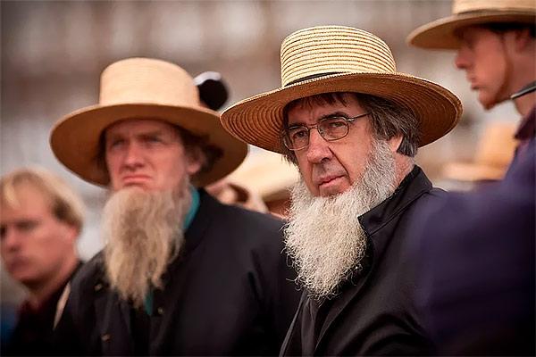 Амишские бороды