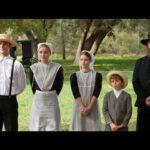 10 интересных фактов об амишах