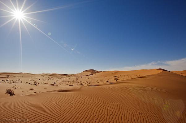 Почему пустыни опасны: температура