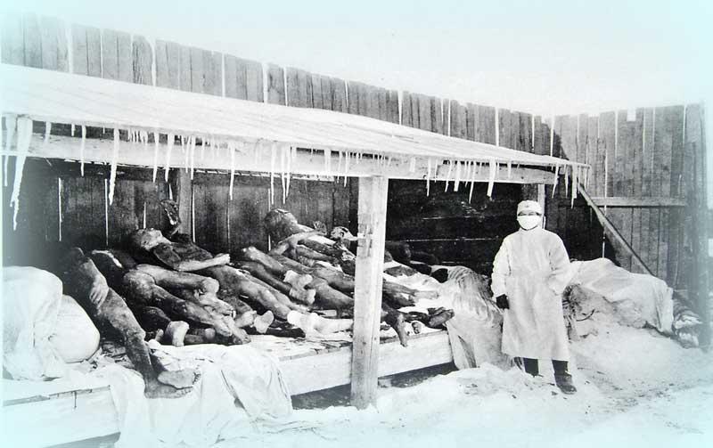 Третья пандемия чумы