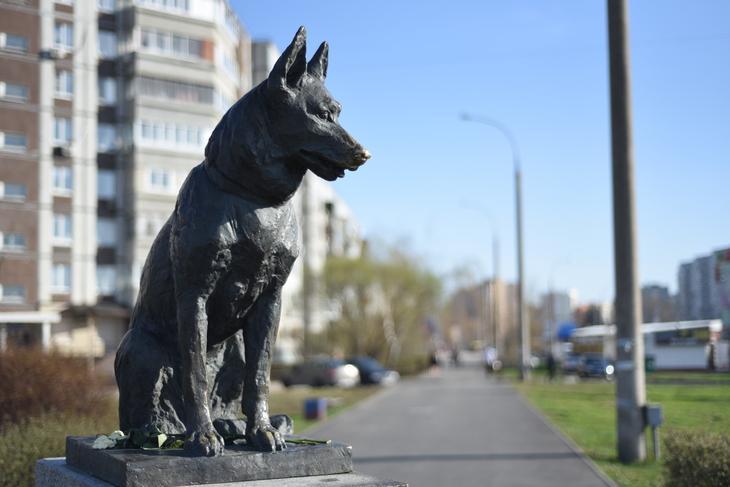 Костя, Тольятти, Россия
