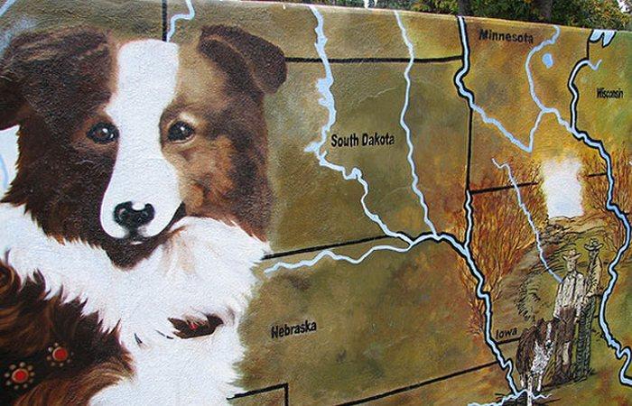 Бобби «чудо-собака», Орегон, США