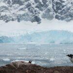 15 Безумных Фактов О Южном Полюсе