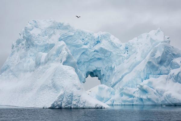 Лед на Южном полюсе не тает
