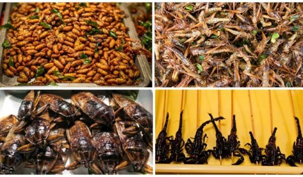 Жареные насекомые в Китае