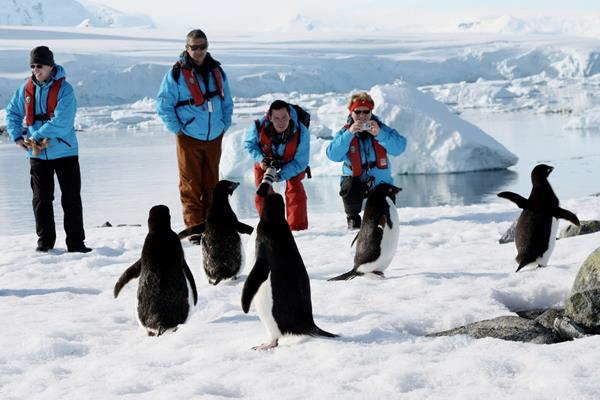 туризм на Антарктиде