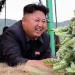13 сумасшедших фактов о Северной Корее