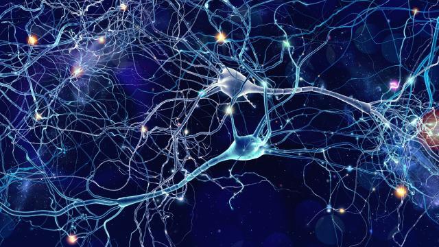 Нервные импульсы