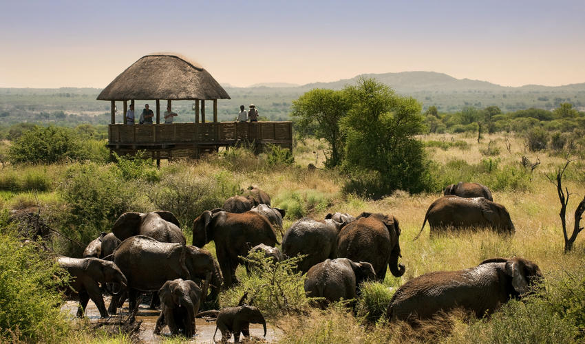 Охотничий Заповедник Мадикве, Африка