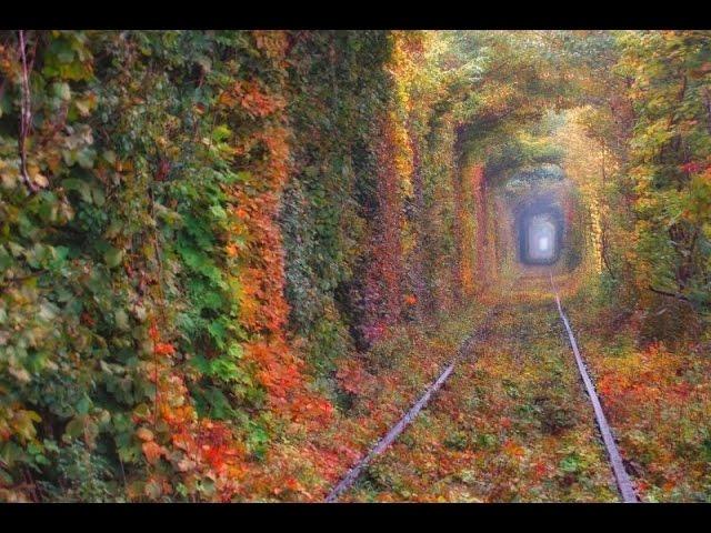 Пройти по туннелю любви, Клевань, Ровенская область