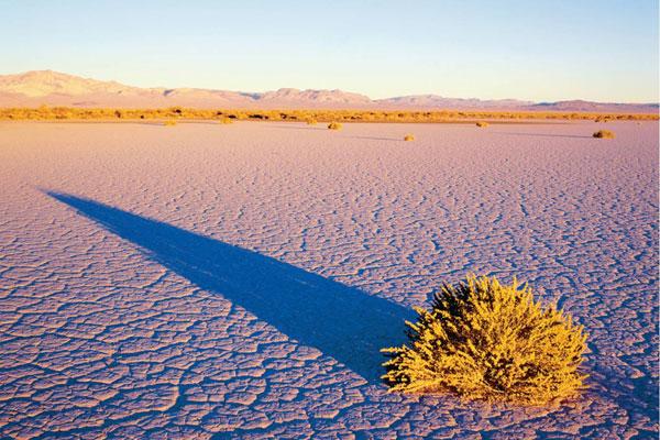 Пустыня Большого Бассейна
