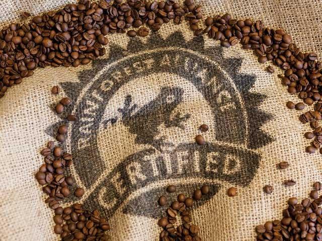 Rain Forest Alliance Certified