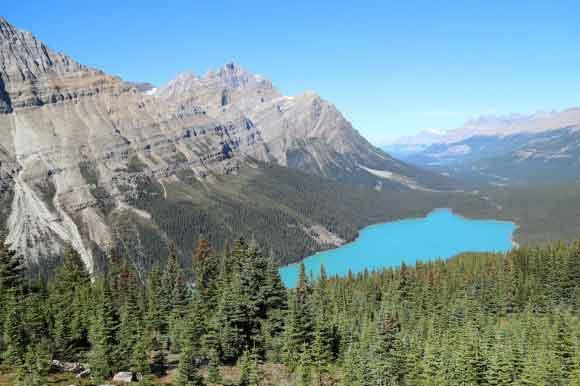 Озеро Пейто, Скалистые горы, Канада