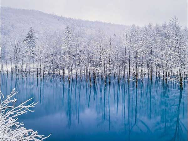 Голубой пруд в Биее, Хоккайдо, Япония