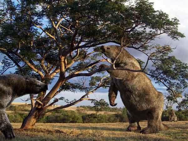 Древние ленивцы