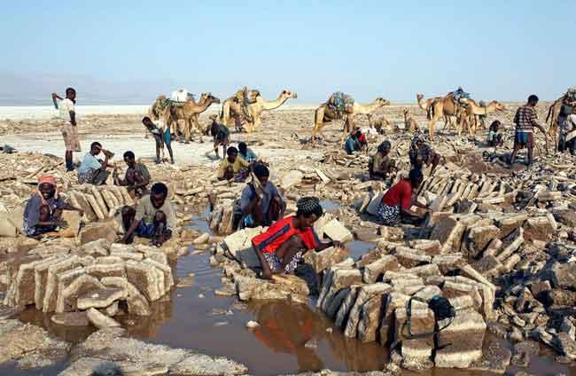 Добыча калия в Даллоле