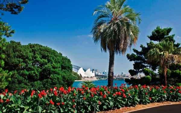 Королевский ботанический сад, Сидней