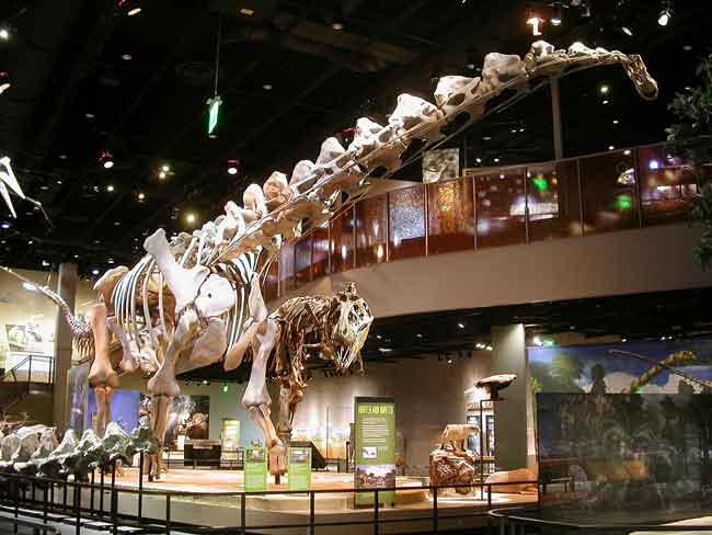 Аламозавр
