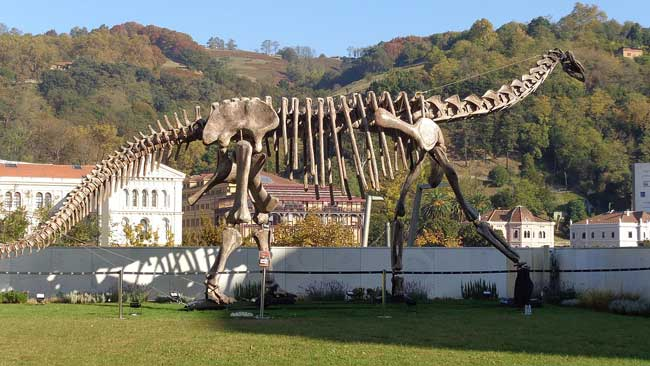 Туриазавр