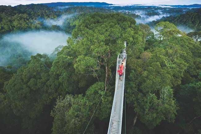 Национальный Парк Улу Тембуронг (Бруней)