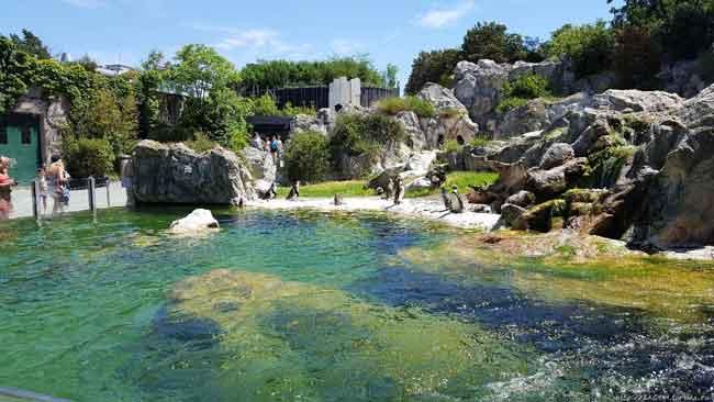 Старейший в мире зоопарк в Австрии