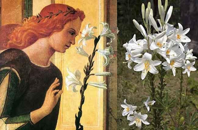 Запахи в средние века