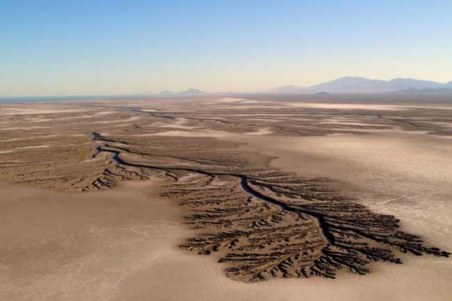 Нижнекалифорнийская пустыня