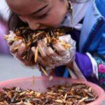 10 Съедобных Жуков, Которых Люди Употребляют В Пищу