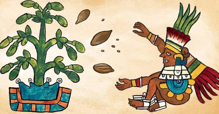 Ацтеки верили, что шоколад является афродизиаком